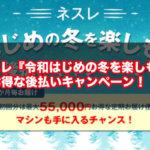 【2019年】ネスレ『令和はじめの冬を楽しもうキャンペーン』最大55,000円お得な後払いキャンペーン!