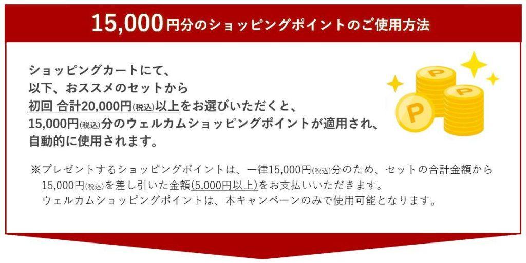 初回利用できるポイント15,000円分でお得!